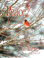 Peace on Earth tile or canvas
